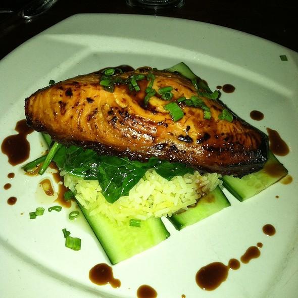 Miso Salmon - Scollay Square, Boston, MA