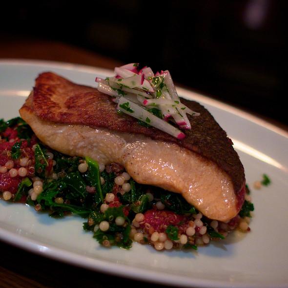 Crispy Seared Salmon - Brindle Room, New York, NY