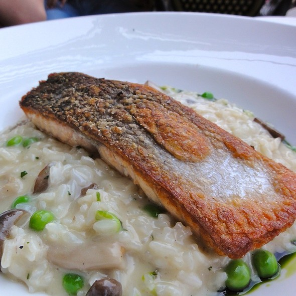 Pan-Roasted Scottish Salmon With Chanterelle Mushroom & English Pea Risotto, Basil Infused Olive Oil - Isabella's, New York, NY