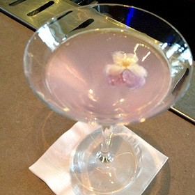 French Lace Coctail  - Steak 954 at the W Fort Lauderdale, Fort Lauderdale, FL