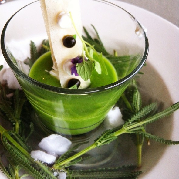 Chilled Sweet Pea And Mint Soup  - The Shores Restaurant - La Jolla Shores Hotel, San Diego, CA