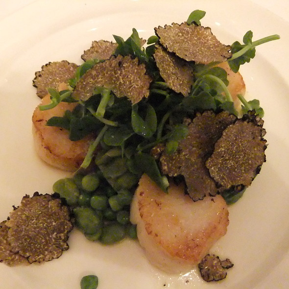 Scallops - Mews of Mayfair, London