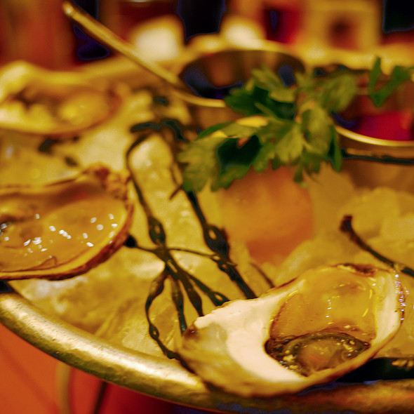 Oysters - Lure New York, New York, NY