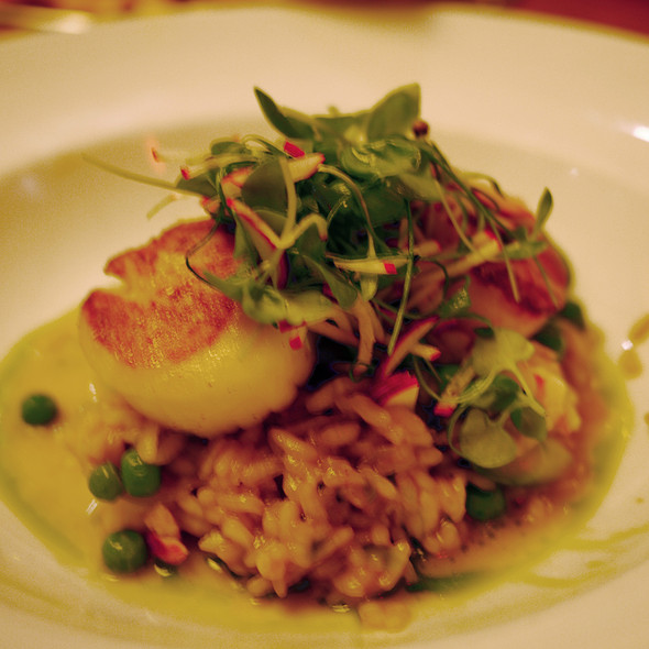 Lobster Risotto with Scallops - Lure New York, New York, NY