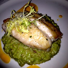 Red Snapper - The French Room, Dallas, TX