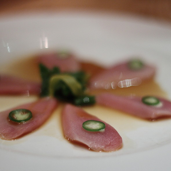 Yellowtail Sashimi with Jalapeno - Nobu Las Vegas - Hard Rock Hotel & Casino, Las Vegas, NV