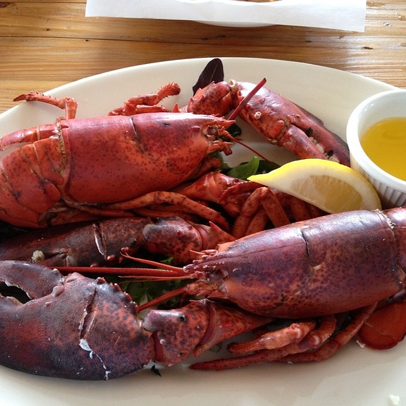 Steamed Twin Lobster Special - Robert's Maine Grill, Kittery, ME