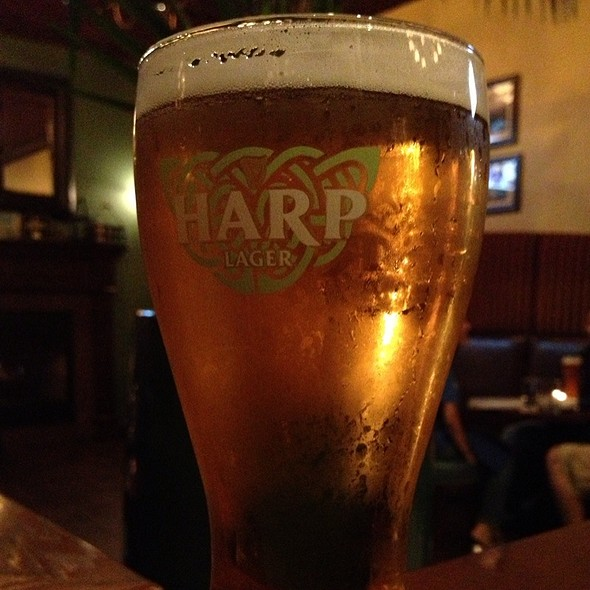 Harp - D4 Irish Pub and Cafe, Chicago, IL