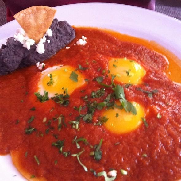 Juevos Rancheros - Talavera Cocina Mexicana, Coral Gables, FL