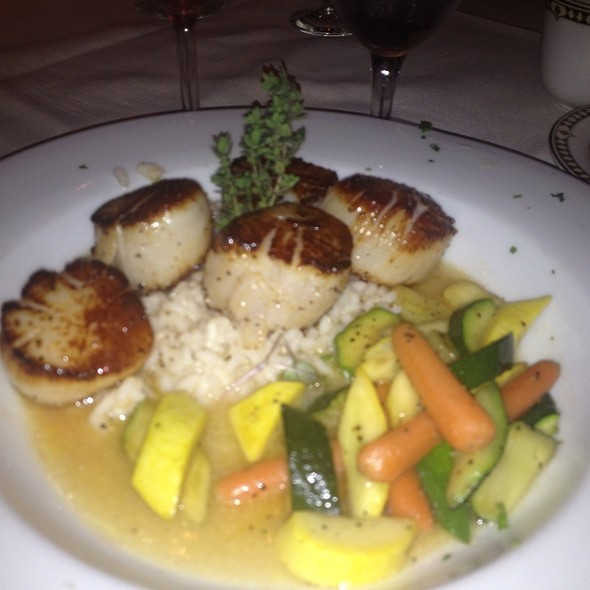 Scallops Con Risotto - Bella Tori at the Mansion, Langhorne, PA