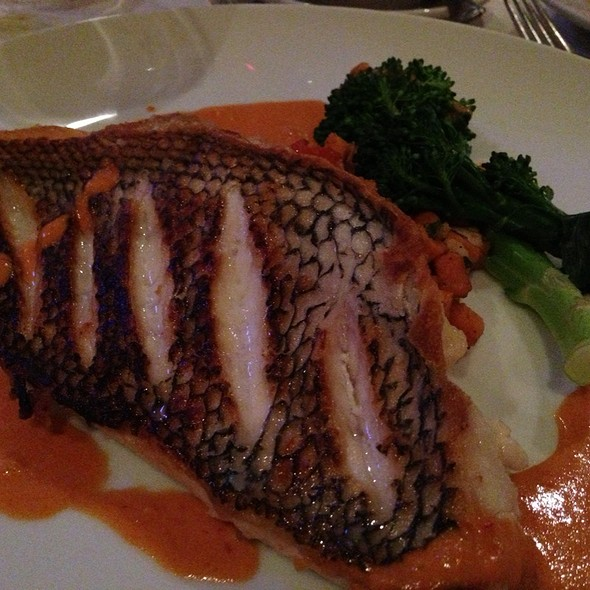 Black Sea Bass - Boccone South, South Orange, NJ