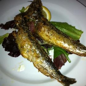 Sauteed Sardines - Black Olive, Baltimore, MD
