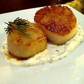 Scallops With A Yogurt Dill Sauce - Zaytinya, Washington, DC