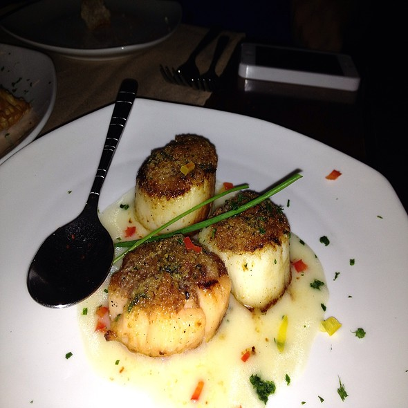 Scallops - El Porron, New York, NY