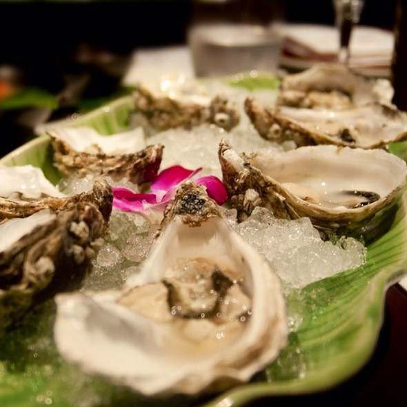 Oyster Shucking - Patara - Soho, London
