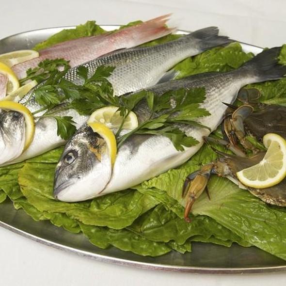 Fresh seafood presentation - Ithaka, New York, NY