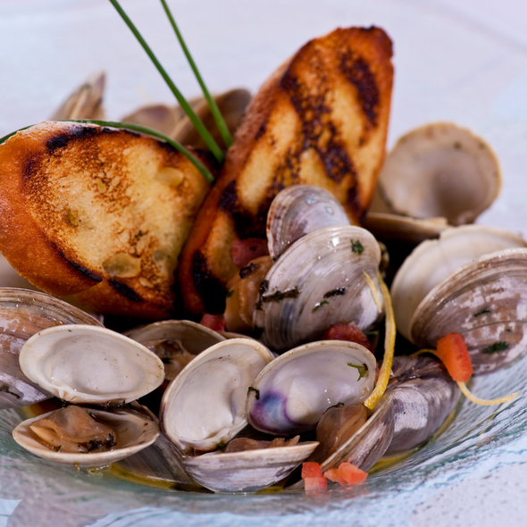 Jersey Little Neck Clams - Fin - Tropicana Atlantic City, Atlantic City, NJ
