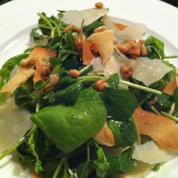 Spring Pea Shoot Salad - Five Fifty-Five, Portland, ME