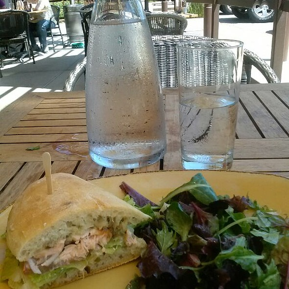Grilled Salmon Sandwich With Salad - Boca Pizzeria, Novato, CA