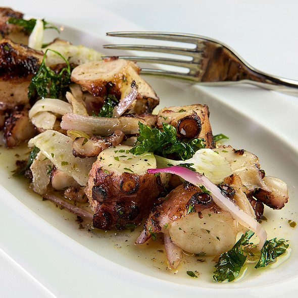 Grilled Octopus - Ammos Estiatorio, New York, NY