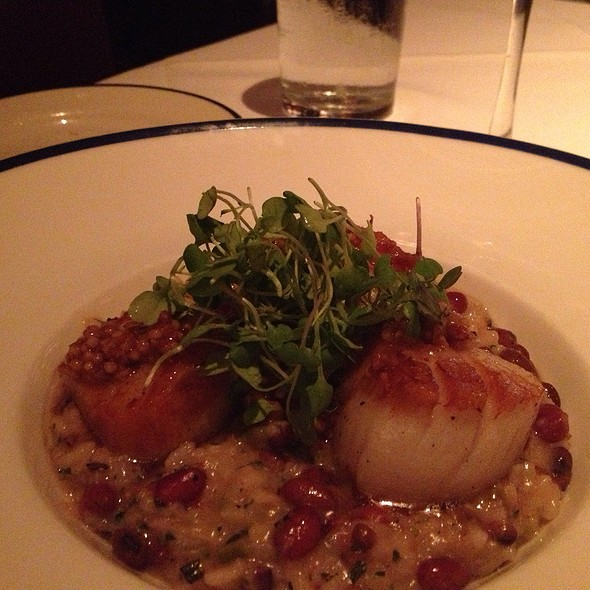 Day Boat Sea Scallops - Blue Ridge Grill, Atlanta, GA