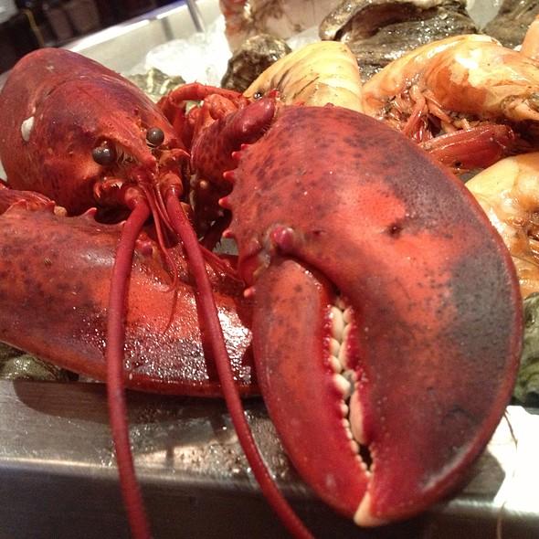 Lobster - Luke, New Orleans, LA