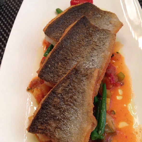 Brook Trout - Marseille, New York, NY