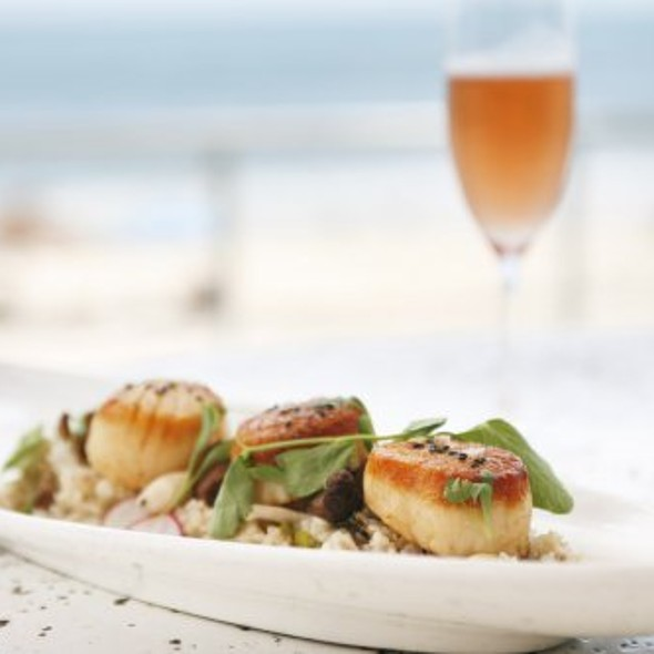 Seared Scallops - Cobalt Restaurant and Lounge - Vero Beach Hotel and Spa, Vero Beach, FL