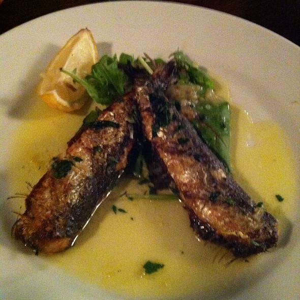 Sardines - The Pembroke, London