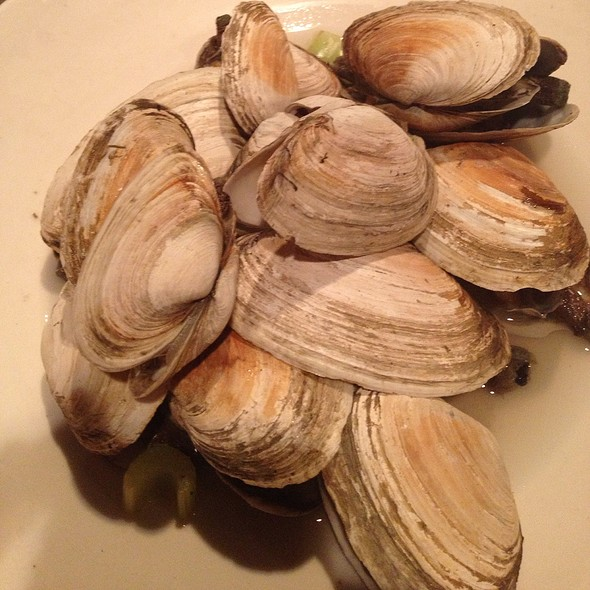 Steamers - London Lennies, Rego Park, NY