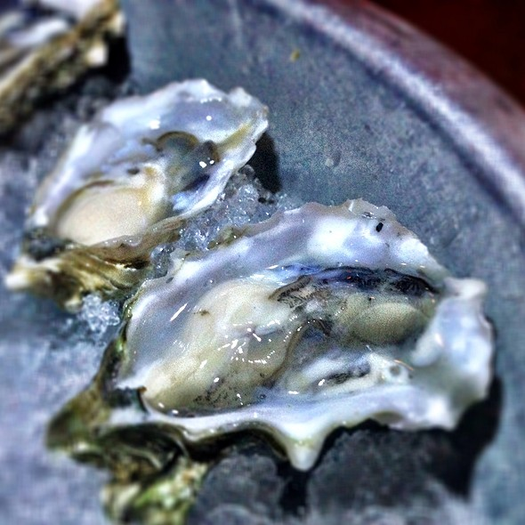 Oysters - Solace & The Moonlight Lounge, Encinitas, CA