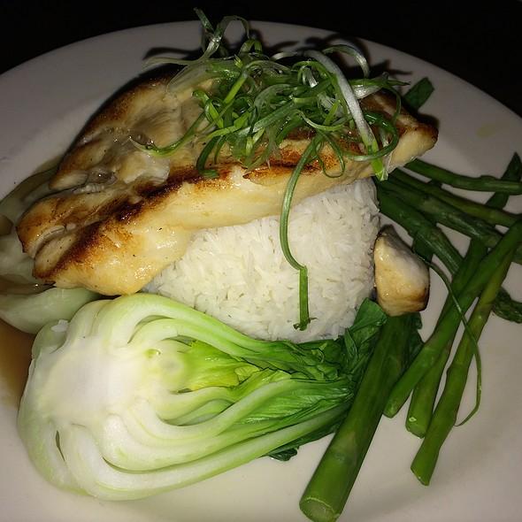 Miso Glazed Sea Bass - The Standard Restaurant & Lounge, Albany, NY
