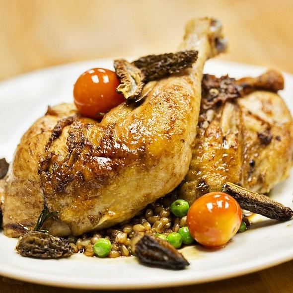 Amish Brick Chicken with Jasmine Rice and Morel Mushrooms - B&O American Brasserie - Hotel Monaco, Baltimore, MD