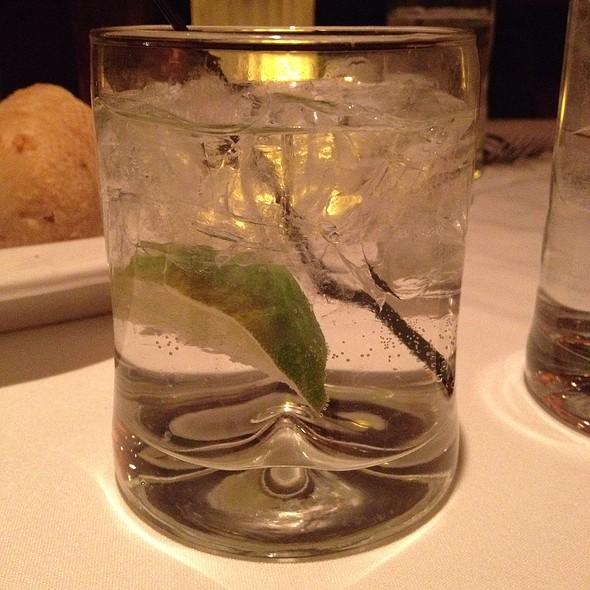 gin and tonic - Fleming's Steakhouse - Livonia, Livonia, MI
