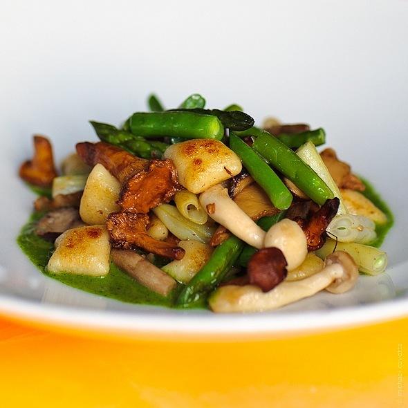 Wild Mushroom Gnocchi - Lola - A Michael Symon Restaurant, Cleveland, OH