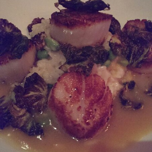 Diver Scallops On Risotto - Harvest Bistro & Bar (Closter, NJ), Closter, NJ