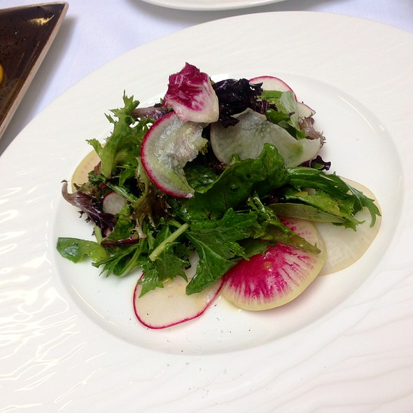 Mixed Field Green Salad, Shaved Fennel, Red Radish, Lemon Herb Vinaigrette - Nob Hill Club at the Mark Hopkins, San Francisco, CA