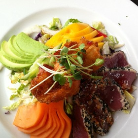 Sesame Ahi Tuna And Coconut Shrimp Salad - Fish Hopper, Monterey, CA