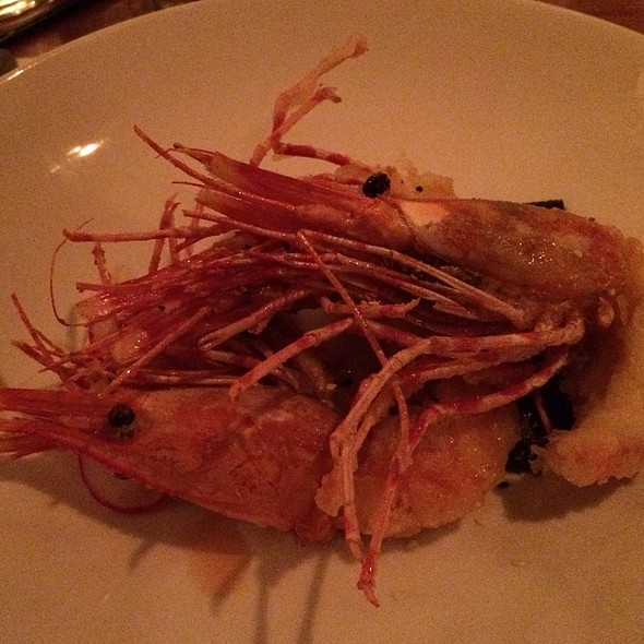 Tempora Shrimps - Alloy, Calgary, AB
