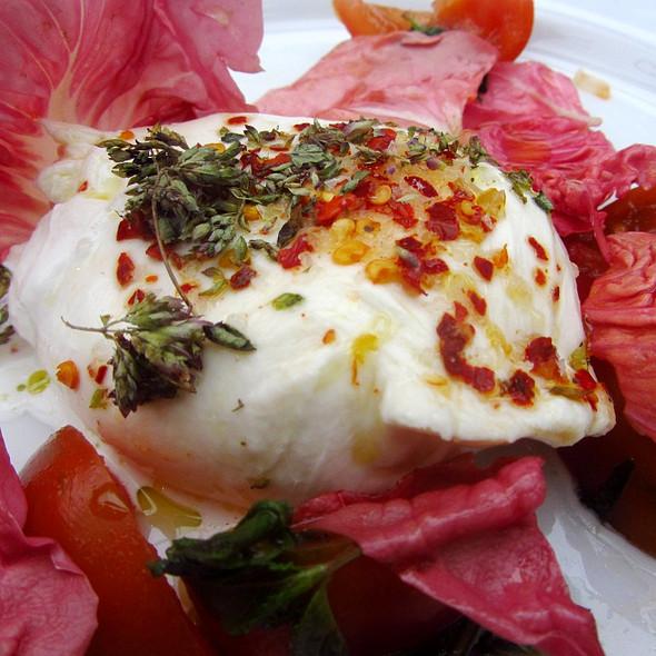 Burrata with camone tomatoes, pink radicchio, oregeno and mint, zisola olive oil - Petersham Nurseries Cafe, Richmond, Greater London