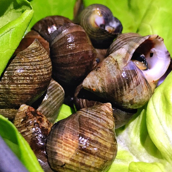 Sea Snails - Bistro Aix, Jacksonville, FL