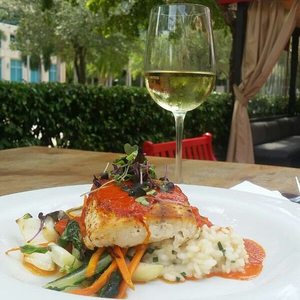 Special Fish Of The Day - Novecento - Brickell, Miami, FL