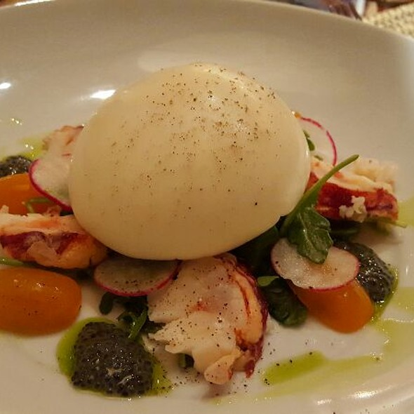 Burratta with Butter Poached Lobster, Arugula, Tomato, Basil Oil and Chia Seeds - Sorrisi, Coconut Creek, FL