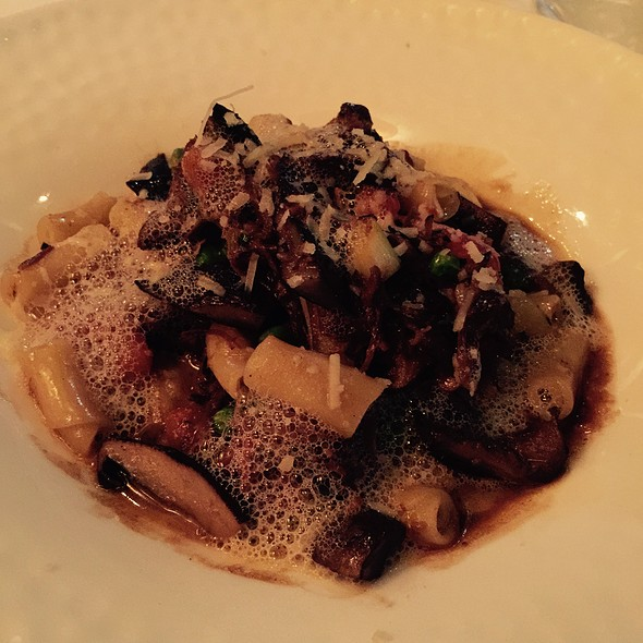 Cavatelli With Short Ribs - Boulevard Five72, Kenilworth, NJ