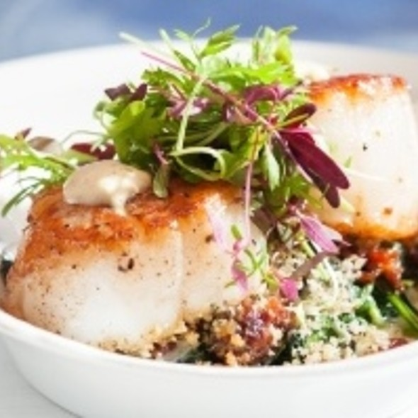 Pan Seared U-8 Dry Scallops - SeaBlue Restaurant & Wine Bar, North Myrtle Beach, SC