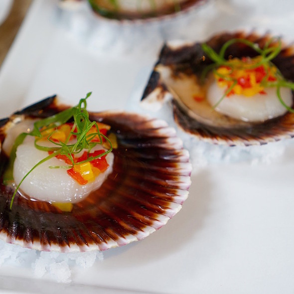 Scallop crudo - Culina, Los Angeles, CA