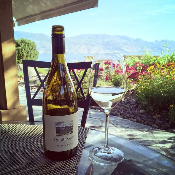 2010 Chenin Blanc - Quails' Gate Estate Winery - Old Vines Restaurant, Kelowna, BC