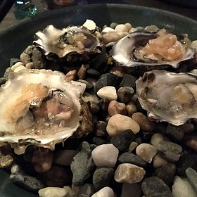 Oysters - 1833, Monterey, CA