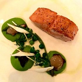 Salmon And Peas - Sorellina, Boston, MA