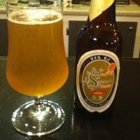 Bedele Beer (Ethiopia) - Arada Ethiopian Restaurant, Denver, CO